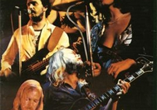 1979, groep1979