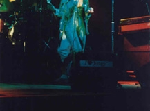 1981, ive1981001